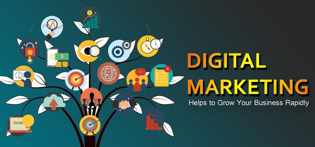 digital marketing company in Allahabad